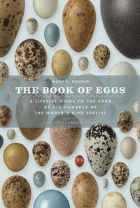 The Book of Eggs cover