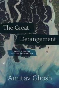The Great Derangement cover