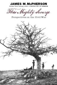 This Mighty Scourge: Perspectives on the Civil War cover