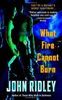 What Fire Cannot Burn cover