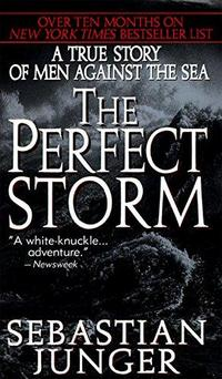 The Perfect Storm cover