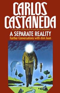 A Separate Reality cover