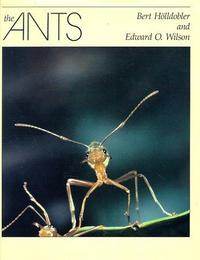 The Ants cover