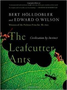 The Leafcutter Ants cover