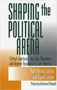 Shaping the Political Arena cover