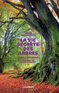 La vie secrète des arbres cover