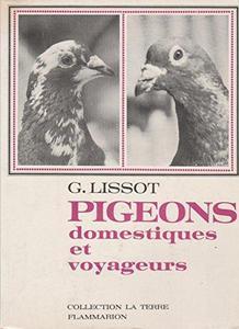Pigeons domestiques et voyageurs cover