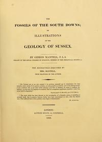 The Fossils of the South Downs cover